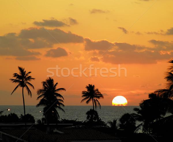 sunset, Varadero, Cuba Stock photo © phbcz