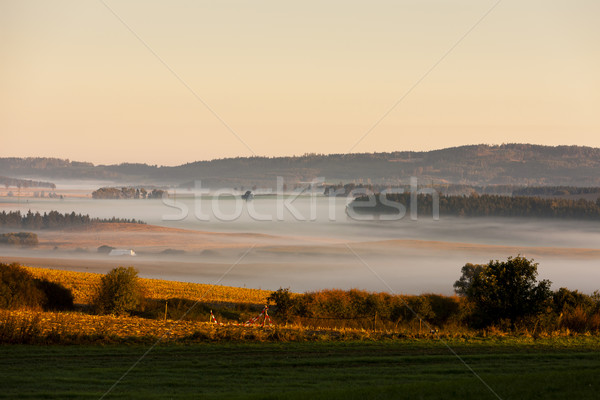 autumnal landscape in fog, Sumava, Czech Republic Stock photo © phbcz