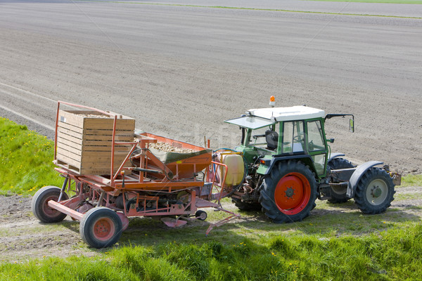 tractor on field, Netherlands Stock photo © phbcz