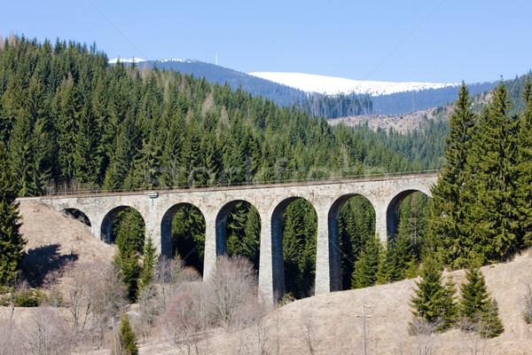 Spoorweg Slowakije brug reizen architectuur buitenshuis Stockfoto © phbcz