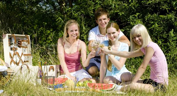 Barátok piknik nő fű bor férfi Stock fotó © phbcz