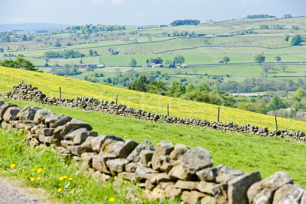 The Pennines, Northumberland, England Stock photo © phbcz