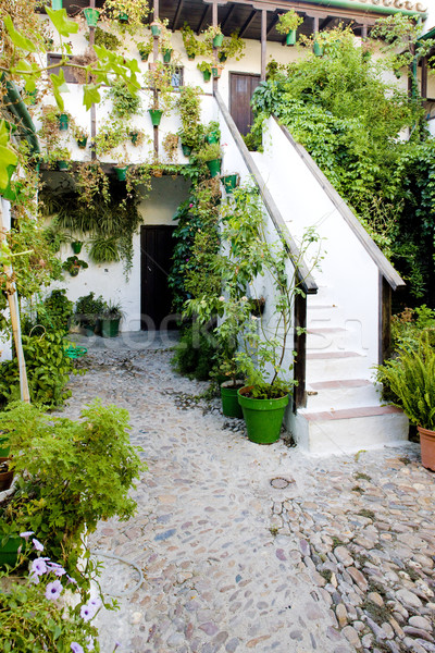 patio (courtyard), Cordoba, Andalusia, Spain Stock photo © phbcz