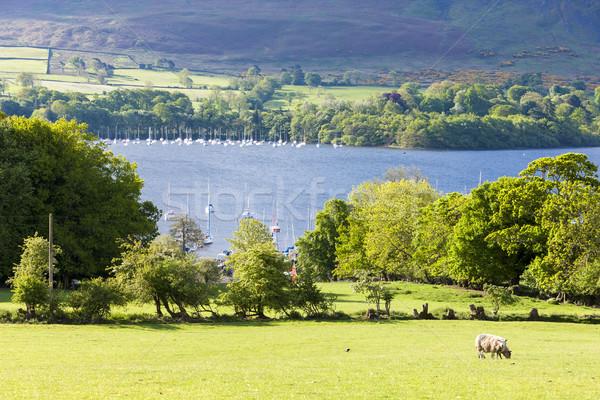 Inglaterra paisaje lago Europa silencio Foto stock © phbcz