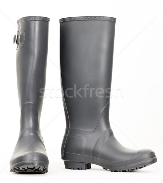 gray rubber boots Stock photo © phbcz