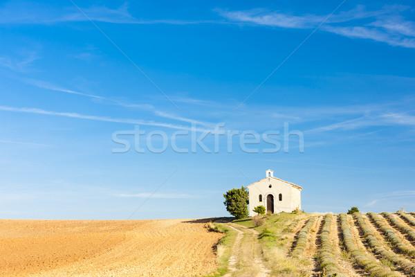Chapelle champ de lavande plateau bâtiment Voyage architecture Photo stock © phbcz
