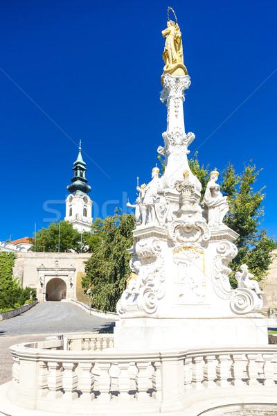 Colonna castello Slovacchia costruzione viaggio architettura Foto d'archivio © phbcz