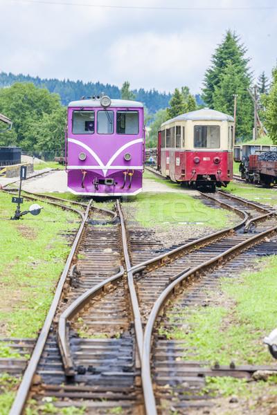 Estreito ferrovia República Checa trem viajar Foto stock © phbcz
