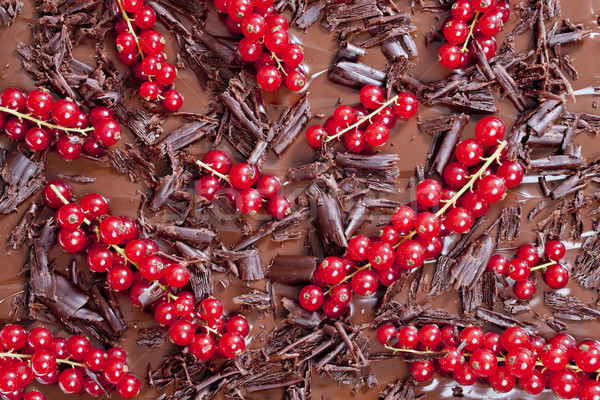 red currant with chocolate Stock photo © phbcz