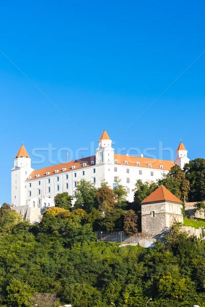Bratislava château Slovaquie ville Voyage architecture Photo stock © phbcz