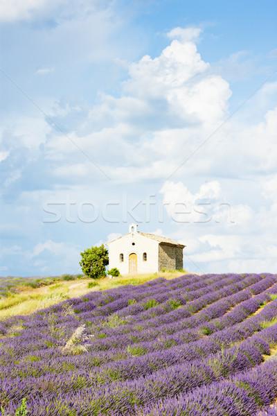 часовня плато цветок здании растений Сток-фото © phbcz