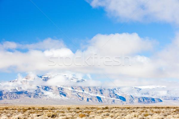 Kış dağlar Nevada ABD manzara manzara Stok fotoğraf © phbcz