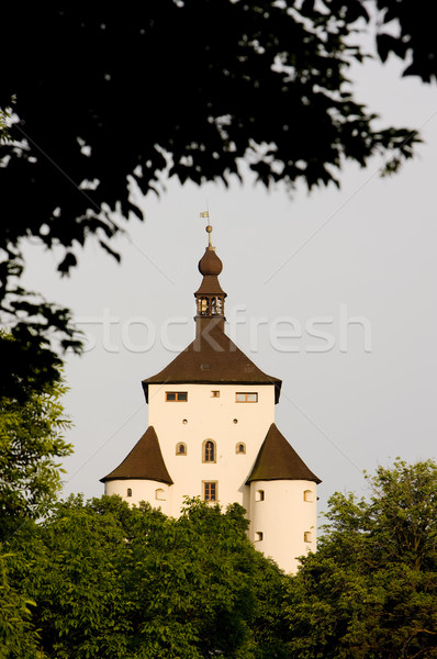 Nouvelle château Slovaquie bâtiments architecture histoire Photo stock © phbcz