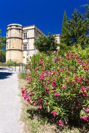 garden in Les Baux de-Provence, Provence, France Stock photo © phbcz