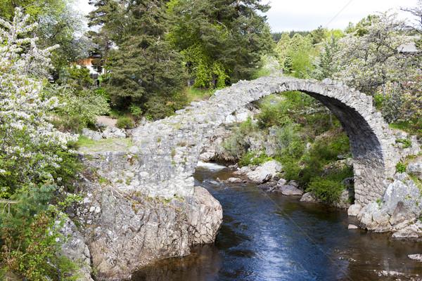 Old Packhorse bridge, Carrbridge, Highlands, Scotland Stock photo © phbcz