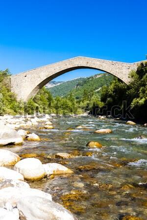 Brug la Frankrijk gebouw reizen rivier Stockfoto © phbcz