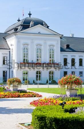 Pałac Polska budynku ogród architektury roślin Zdjęcia stock © phbcz