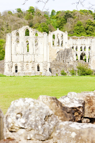 ruins of Rievaulx Abbey, North Yorkshire, England Stock photo © phbcz