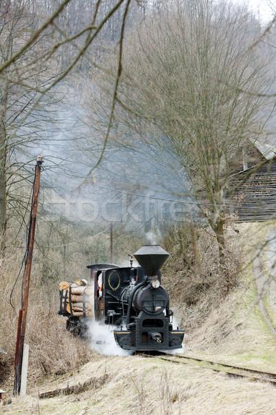 steam train, Ciernohronska Railway, Slovakia Stock photo © phbcz