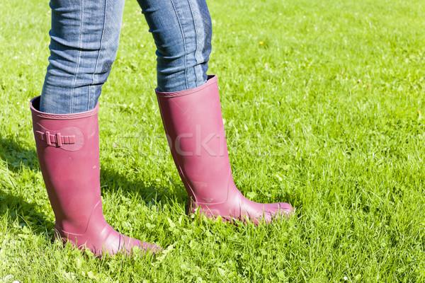 Detail vrouw gazon gras Stockfoto © phbcz