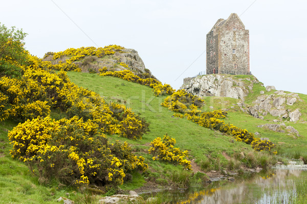 Smailholm Tower near Kelso, Scottish Borders, Scotland Stock photo © phbcz