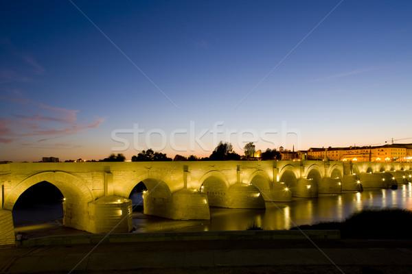 Roman bridge at night, Cordoba, Andalusia, Spain Stock photo © phbcz