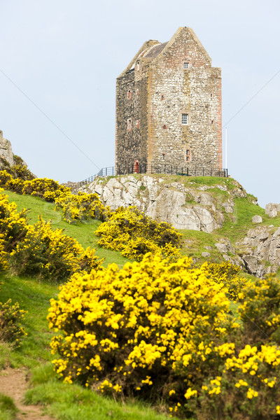 Smailholm Tower near Kelso, Scottish Borders, Scotland Stock photo © phbcz