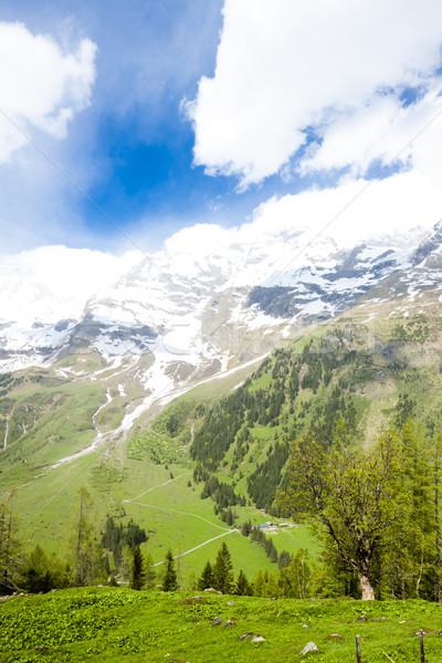 Upper Tauern National Park near Grossglockner, Carinthia and Eas Stock photo © phbcz