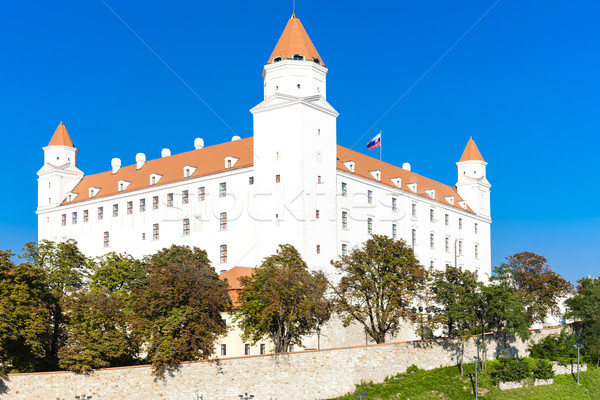 Bratislava château Slovaquie Voyage architecture Europe Photo stock © phbcz