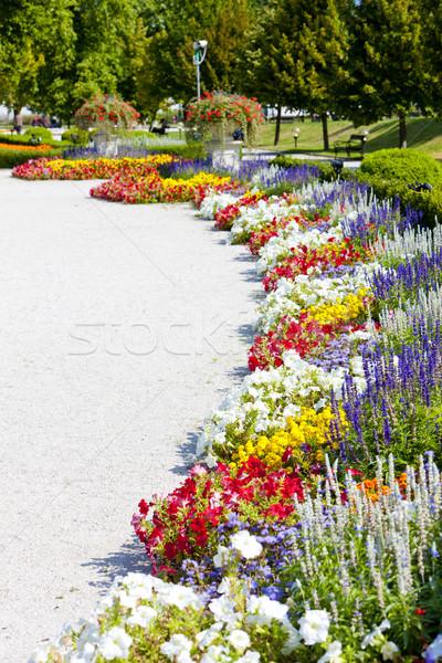 Grădină palat Bratislava Slovacia floare Imagine de stoc © phbcz