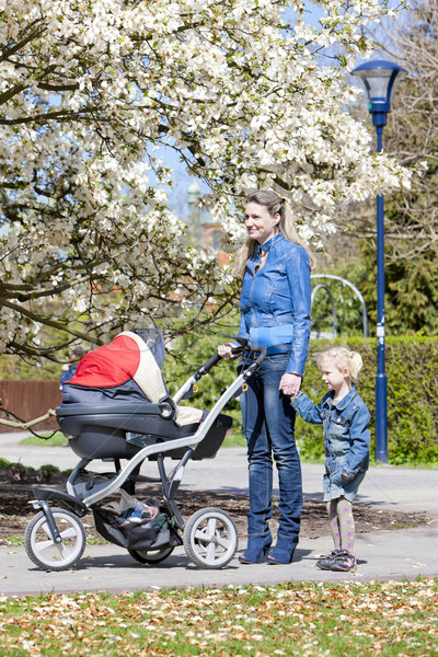 mother and her daughter with a pram on spring walk Stock photo © phbcz