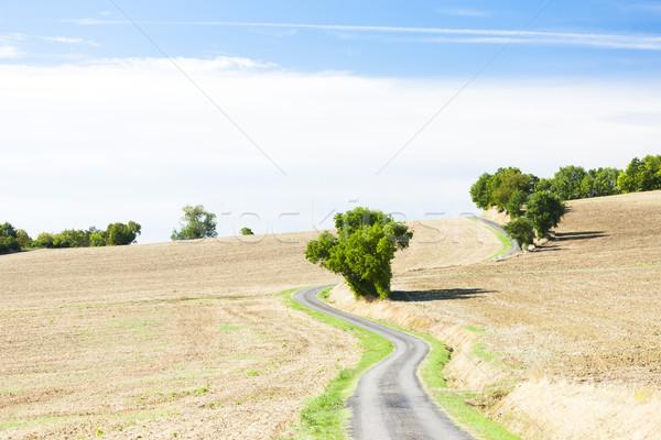 Foto d'archivio: Campo · strada · dipartimento · Francia · panorama · impianto