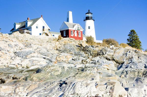 Stok fotoğraf: Deniz · feneri · nokta · ışık · Maine · ABD · Bina