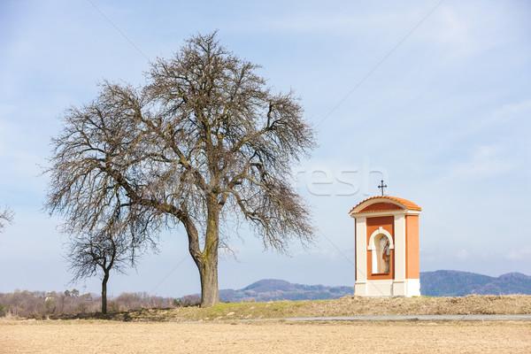 Tortura región República Checa árbol edificio arquitectura Foto stock © phbcz