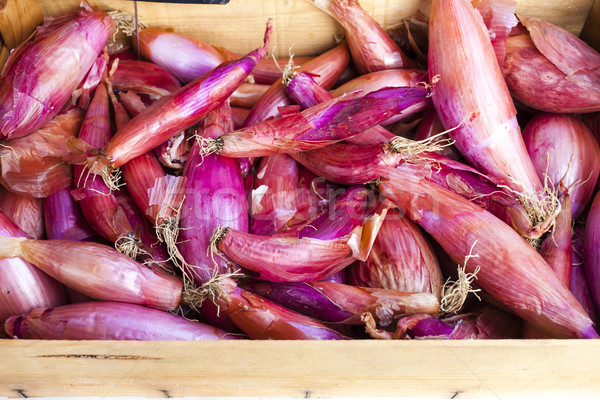 shallots, market in Forcalquier, Provence, France Stock photo © phbcz