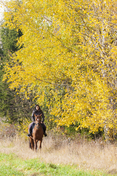 equestrian on horseback in autumnal nature Stock photo © phbcz