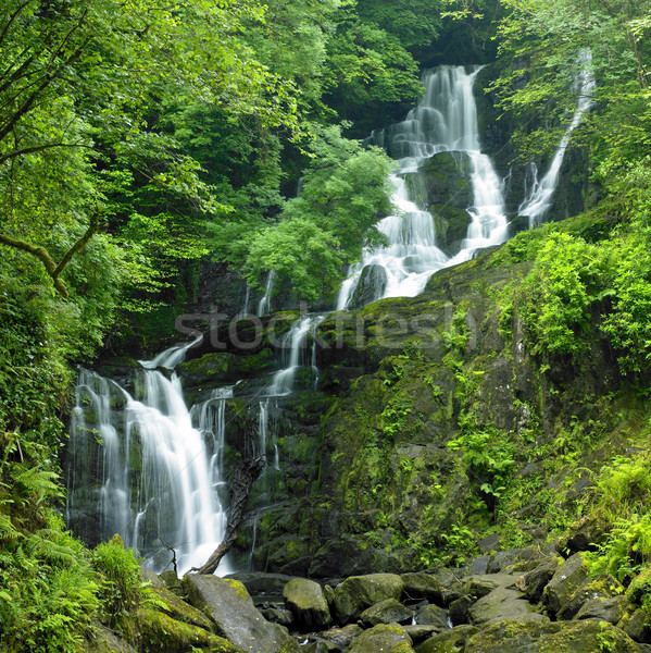 Torc Waterfall, Killarney National Park, County Kerry, Ireland Stock photo © phbcz