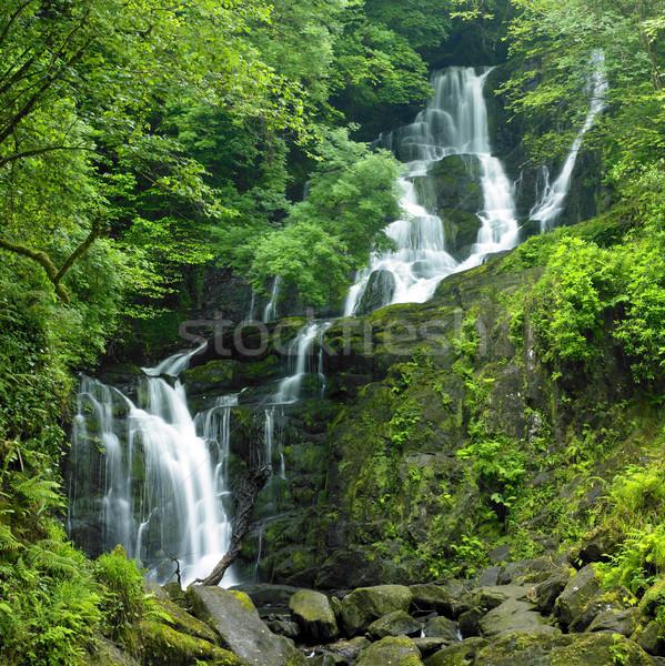 滝 公園 アイルランド 木 旅行 川 ストックフォト © phbcz
