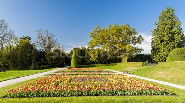 garden of Lednice Palace, Czech Republic Stock photo © phbcz