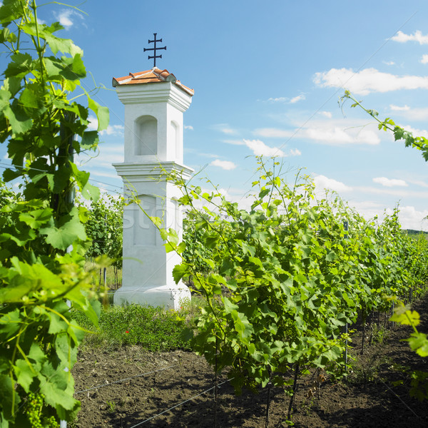 village chapel with wineyard near Perna, Czech Republic Stock photo © phbcz