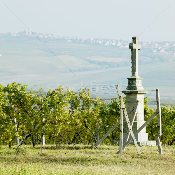 cross with vineyard, Southern Moravia, Czech Republic Stock photo © phbcz