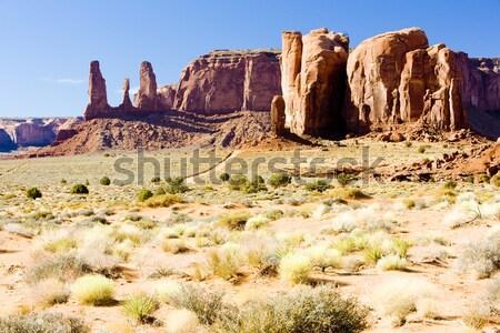 Camelo vale parque EUA viajar rocha Foto stock © phbcz