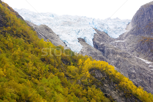 Supphellebreen Glacier, Jostedalsbreen National Park, Norway Stock photo © phbcz