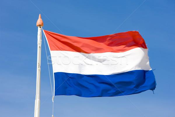 the Netherlands flag Stock photo © phbcz