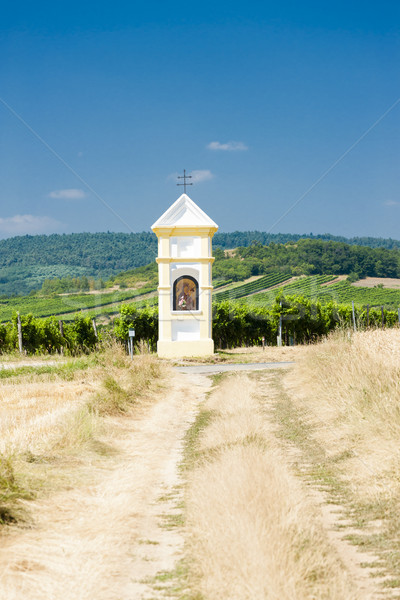 God''s torture with vineyard near Retz, Lower Austria, Austria Stock photo © phbcz