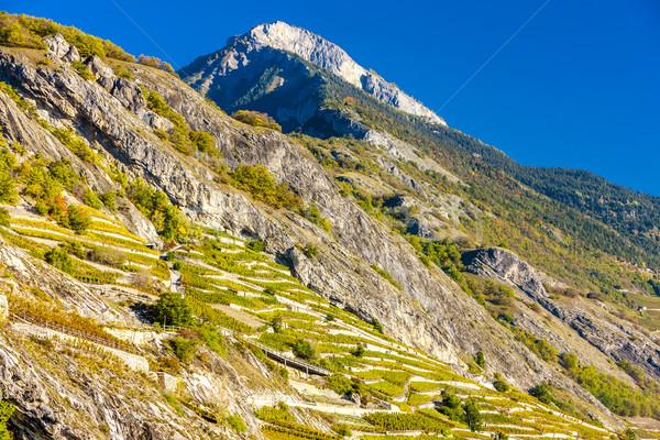 Bölge İsviçre manzara seyahat dağlar Avrupa Stok fotoğraf © phbcz