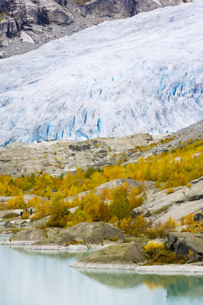 Nigardsbreen Glacier, Jostedalsbreen National Park, Norway Stock photo © phbcz