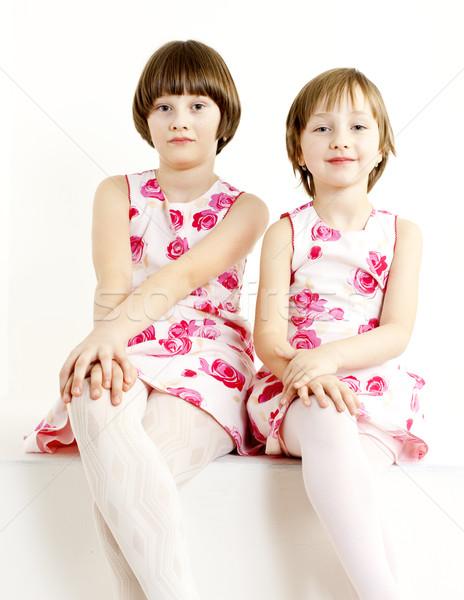 Portret twee zusters soortgelijk jurken Stockfoto © phbcz