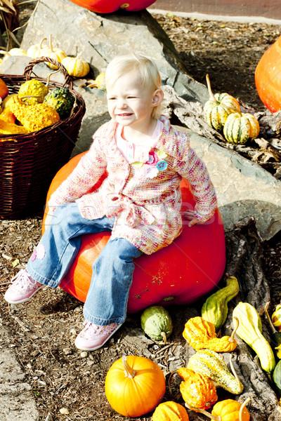 little girl with pumpkins Stock photo © phbcz
