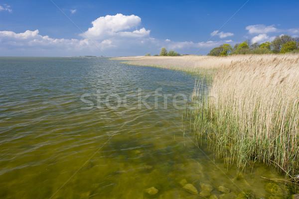 Zeegezicht Nederland water natuur zee reizen Stockfoto © phbcz